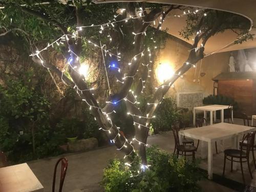 La Dolce Vita in giardino PALERMO (16)